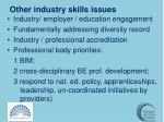other industry skills issues