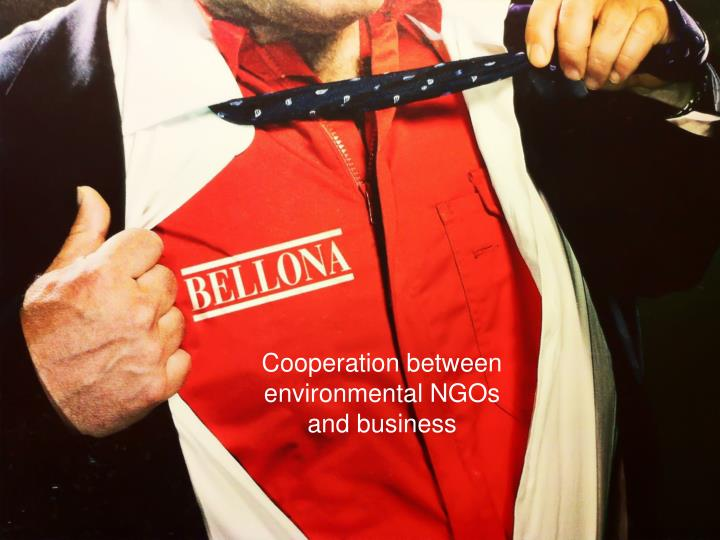 Cooperation between environmental NGOs and business