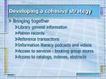 developing a cohesive strategy