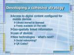 developing a cohesive strategy1