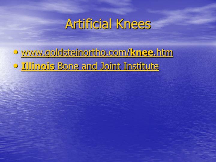 Artificial Knees