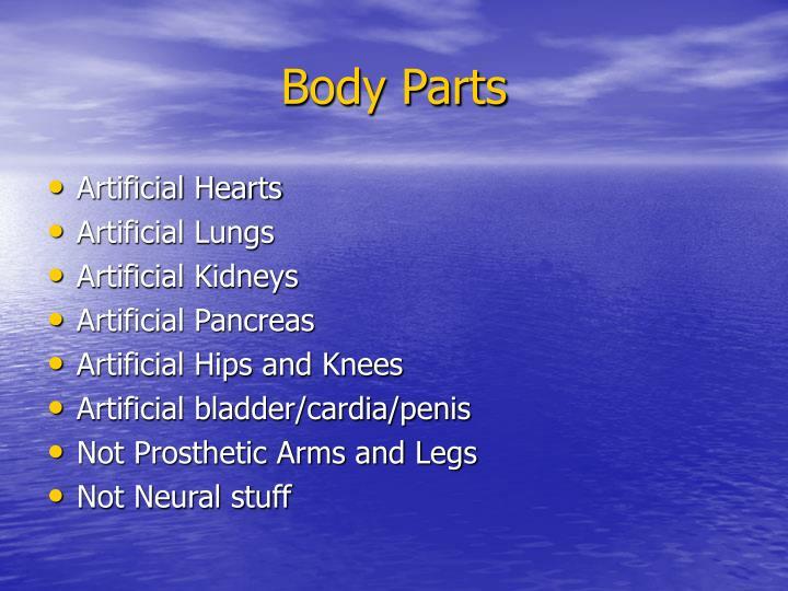 Body parts1