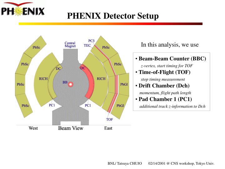 Phenix detector setup