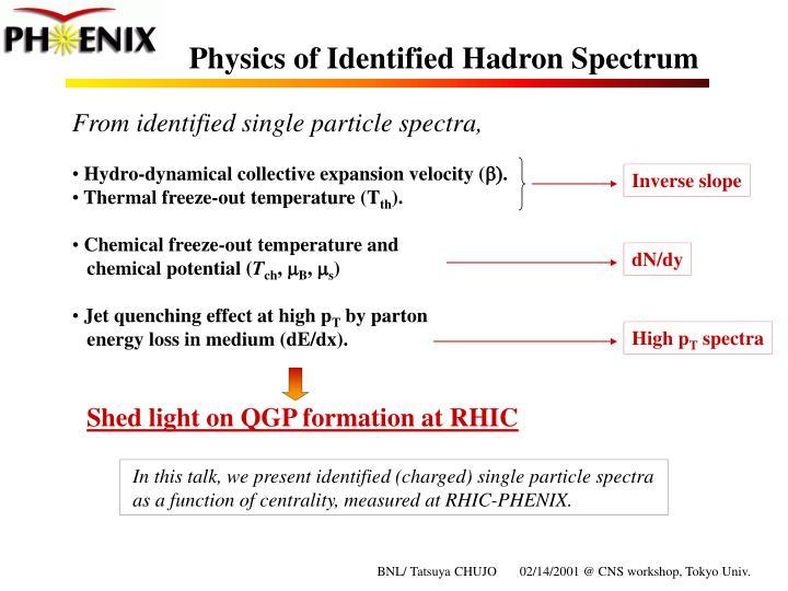 Physics of identified hadron spectrum