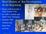 brief history of bat development in the beginning