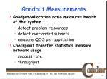 goodput measurements