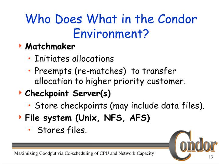 Who Does What in the Condor Environment?