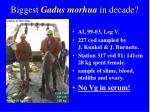 biggest gadus morhua in decade