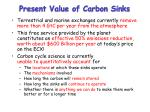 present value of carbon sinks