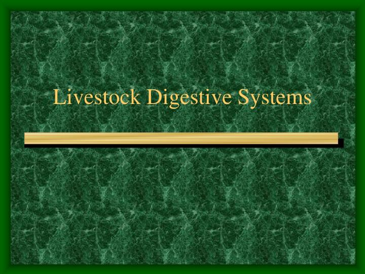 livestock digestive systems n.