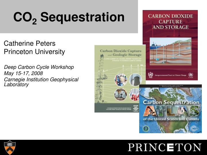 co 2 sequestration n.