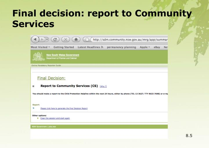 Final decision: report to Community Services