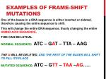 examples of frame shift mutations