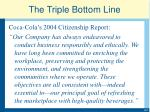the triple bottom line1