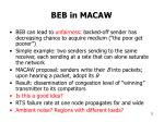 beb in macaw