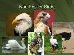 non kosher birds