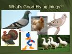 what s good flying things