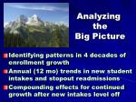 analyzing the big picture