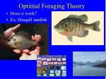 optimal foraging theory3