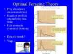 optimal foraging theory5