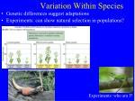 variation within species7