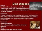 disc disease