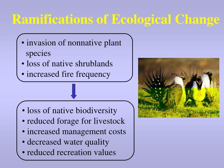 Ramifications of Ecological Change