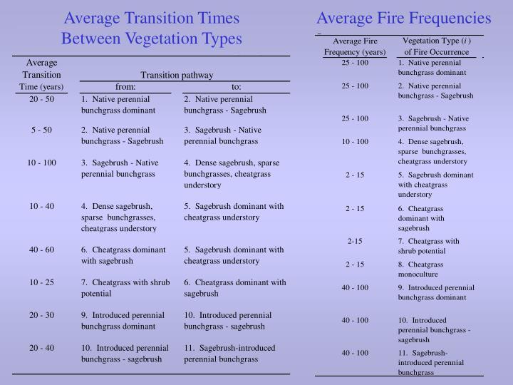 Average Transition Times Between Vegetation Types