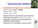 topoisomerase inhibitors