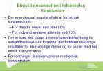 etnisk koncentration i folkeskolen konklusion