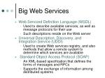 big web services1