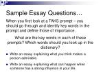 sample essay questions