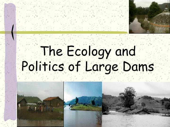 the ecology and politics of large dams n.