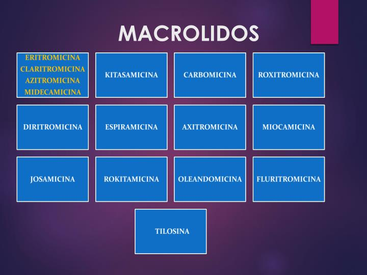 Ppt Macrolidos Powerpoint Presentation Free Download Id 5621748