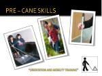 pre cane skills
