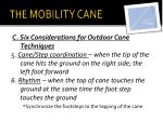 the mobility cane4
