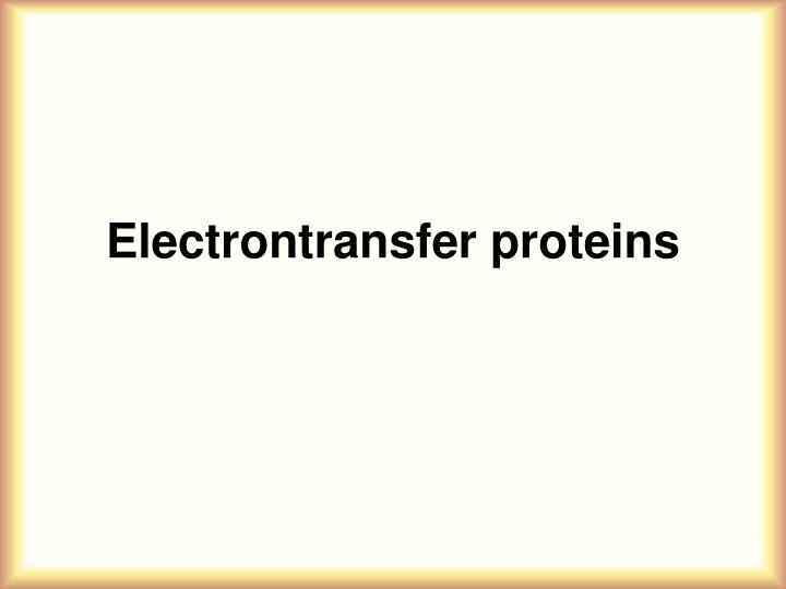 electrontransfer proteins n.