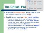 the critical problem1