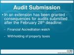 audit submission