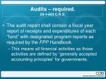audits required 29 1 603 c r s1