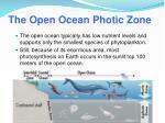 the open ocean photic zone
