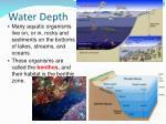 water depth2