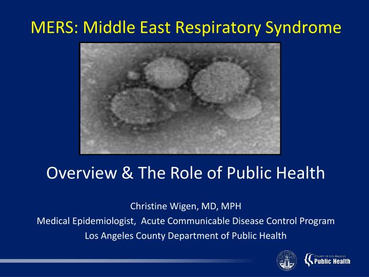 mers middle east respiratory syndrome n.