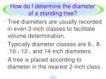 how do i determine the diameter of a standing tree1