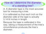 how do i determine the diameter of a standing tree2