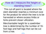 how do i measure the height of standing trees2