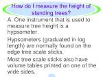 how do i measure the height of standing trees4
