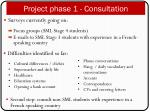 project phase 1 consultation