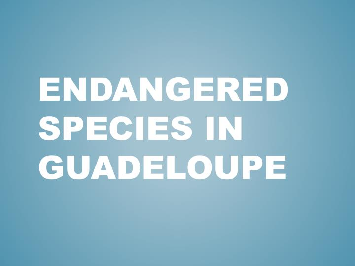 endangered species in guadeloupe n.