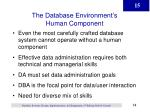 the database environment s human component